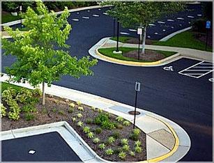 Developer Landscaping