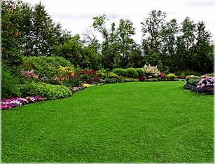 Property Maintenance Landscapers