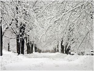 Snow Removal Service & Plowing Malden MA